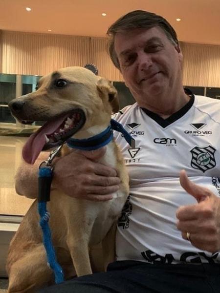 Bolsonaro compartilhou imagem ao lado do cachorro nas redes sociais - Reprodução/Instagram