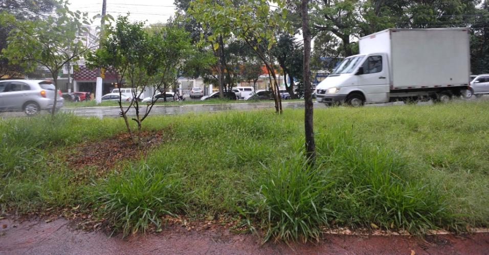 26.abr.2017 - Ciclovia cheia de mato na avenida Brás Leme, na altura do número 2.500, na zona norte de São Paulo