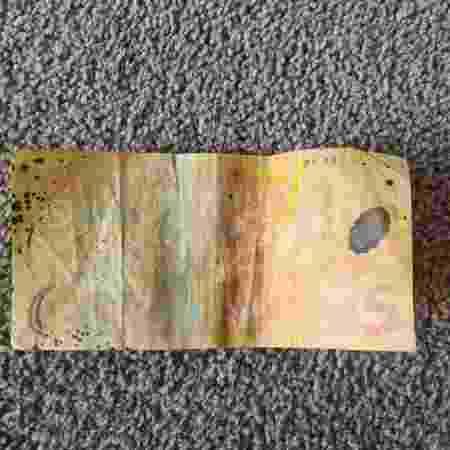 Cédula encontrada pela criança tem design parecido da atual e está desgastada - Reprodução/Trade Me - Reprodução/Trade Me