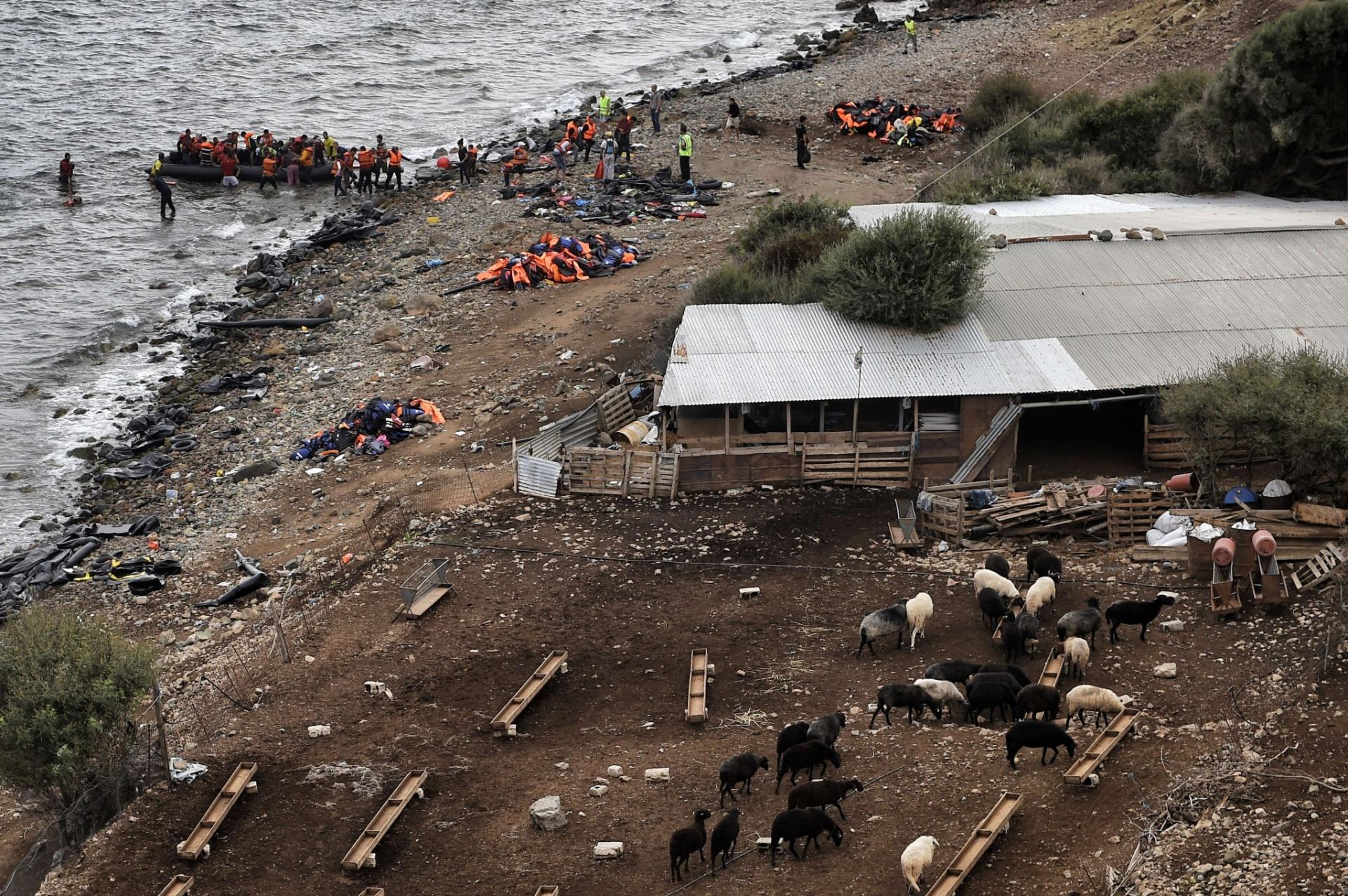 29.set.2015 - Bote com refugiados chega a ilha de Lesbo, na Grécia, após cruzar o mar Egeu desde a Turquia. Cerca de meio milhão de pessoas já chegaram esse ano à Europa por essa rota