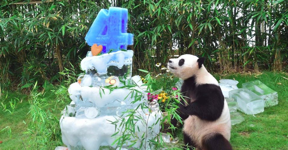 10.jul.2016 - O panda Le Bao ganhou um bolo por seu aniversário de quatro anos em evento no parque Everland, na cidade de Yongin, na Coreia do Sul