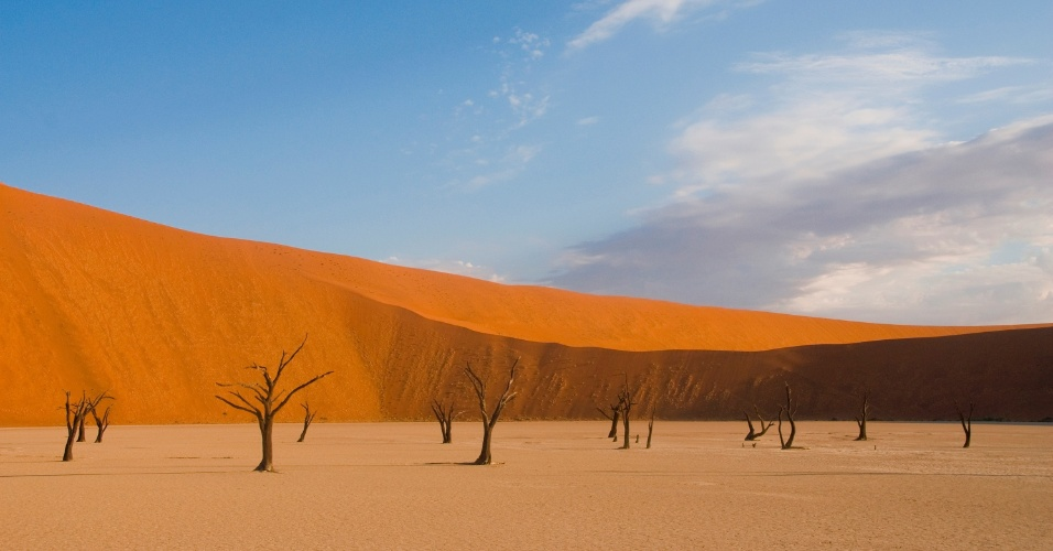 Acácias mortas permanecem em pé perto do deserto da Namíbia, na África. Acredita-se que essas árvores morreram entre 600 e 700 anos e, muito secas para decompor, foram petrificadas pelo sol