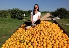 Conheça a empresa Laranjas Online, que vende a fruta por meio de assinatura - Divulgação