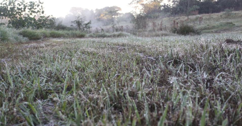 21.mai.2018 - O município de Campo Mourão, na região Centro-Oeste do Paraná, amanheceu com geada na manhã desta segunda