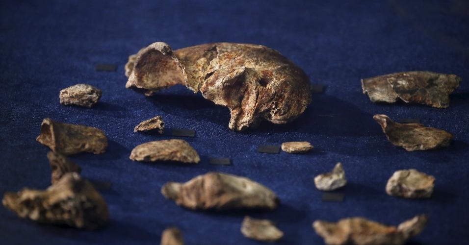 """10.set.2015 - Em 2013 e 2014, os cientistas encontraram mais de 1.550 ossos que pertenceram a, pelo menos, 15 indivíduos, incluindo bebês, adultos jovens e pessoas mais velhas. Todos apresentavam uma morfologia homogênea e pertenciam a uma """"nova espécie do gênero humano que era desconhecida até então"""""""