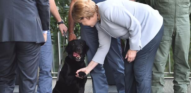 A chanceler alemã Angela Merkel cumprimenta o cão Leo