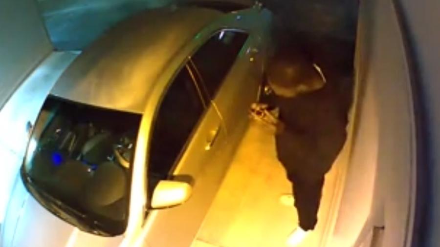 Homem estacionou carro normalmente na garagem e, para não acordar moradores, tirou o tênis antes de roubar pertences - Reprodução