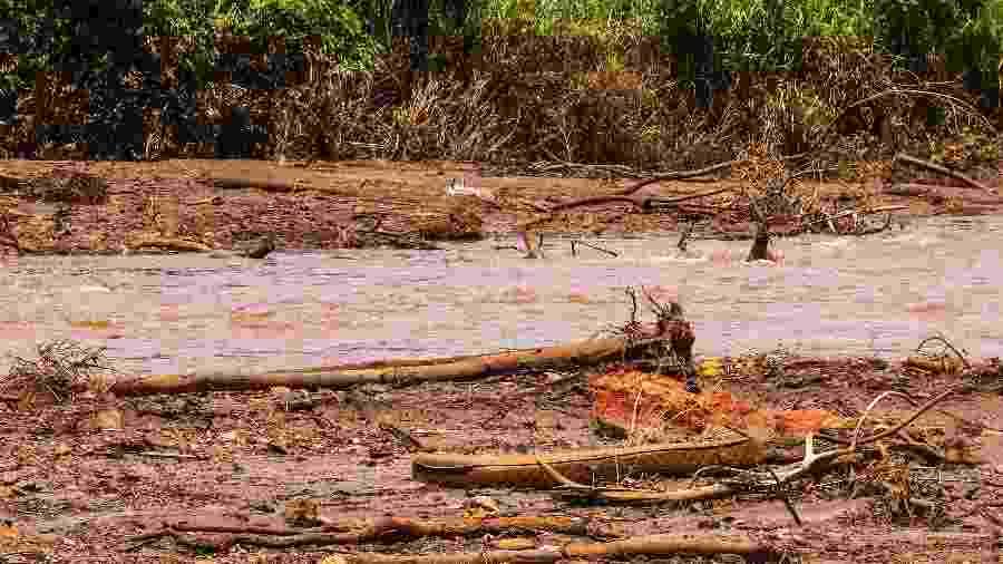 2.fev.2019 - Região exata que a lama da barragem encontrou o rio Paraopeba em Brumadinho (MG) - Cadu Rolim - 2.fev.2019/Fotoarena/Estadão Conteúdo