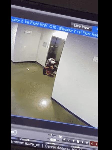 Câmera mostra momento em que vizinho salva cachorro que teve a guia presa no elevador - Reprodução/Twitter