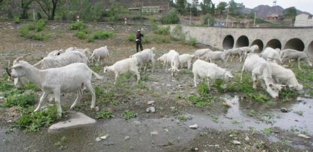 As secas deixaram os leitos de curso d'água visíveis nos arredores de Pequim