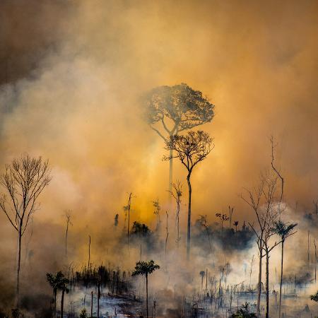 Foco de incêndio em ponto da Amazônia em agosto de 2020 - Christian Braga / Greenpeace