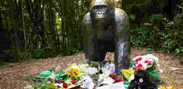 Protesto contra morte de gorilas - William Philpott/Reuters - William Philpott/Reuters