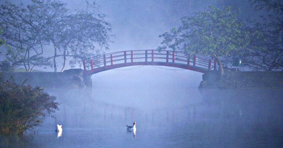 14.jun.2016 - Patos enfrentam névoa e forte frio no lago do parque Centenário, em Mogi das Cruzes (SP). A ponte japonesa do parque encoberta pela névoa fizeram a paisagem lembrar a de um quadro impressionista
