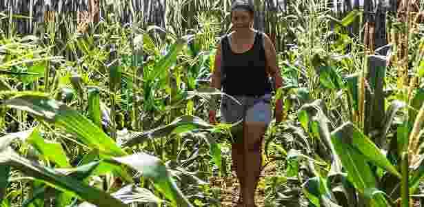 Mudanças propostas pela reforma trabalhista vão afetar jornadas no campo - Lilo Clareto/Repórter Brasil