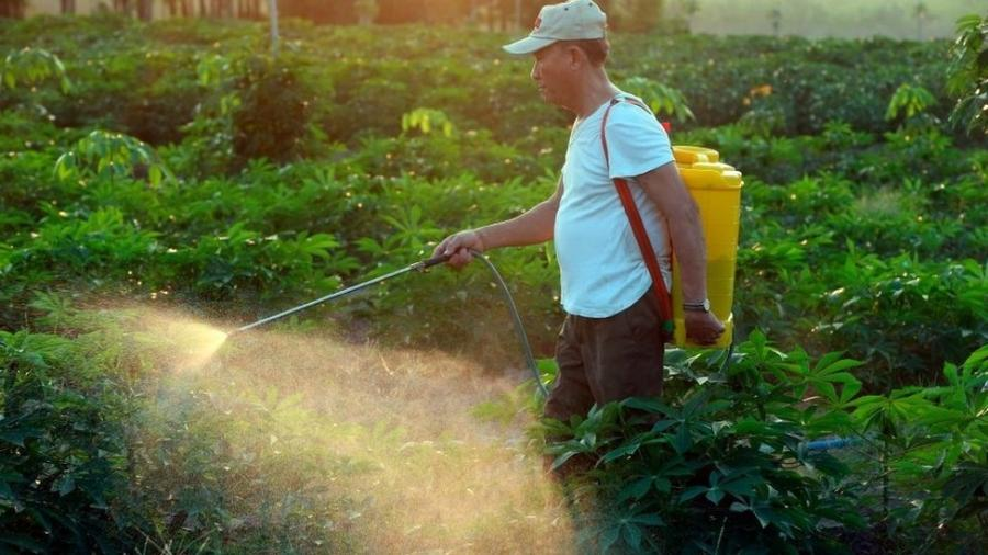Maior parte dos pesticidas considerados prejudiciais à saúde e ao meio ambiente é vendidos a países pobres ou emergentes - GETTY IMAGES / BBC
