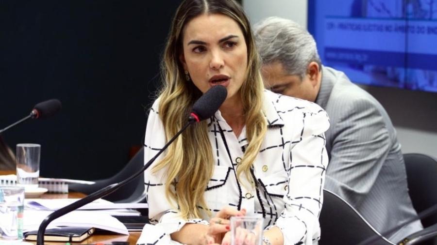 O projeto é de autoria da deputada Paula Belmonte (Cidadania-DF) - Vinicius Loures/Câmara dos Deputados