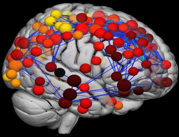 Tomografias mostram mudanças associadas a processos de pensamento complexo - Divulgação/Universidade de Cambridge