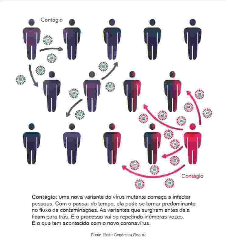 Coronavírus: como a mutação acontece parte 2 - Arte UOL - Arte UOL