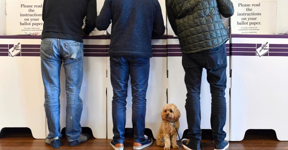 """2.jul.2016 - Eleitor levou até o cachorro em posto eleitoral na região de Bondi Beach, em Sydney. Cerca de 14 milhões de australianos foram convocados para ir às urnas para decidir quem comandará o país nos próximos três anos. O primeiro-ministro Malcolm Turnbull aposta na incerteza econômica criada pelo """"Brexit"""" para se oferecer como única opção para manter a estabilidade no país. Desde que Turnbull anunciou no início de maio a dissolução das duas câmaras legislativas, antecipando a convocação do pleito, a coalizão Liberal-Nacional, liderada por ele, e o Partido Trabalhista, de Bill Shorten, estão praticamente empatados"""