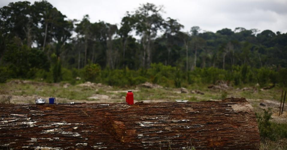 material especial da Repórter Brasil - só usar com reportagem deles