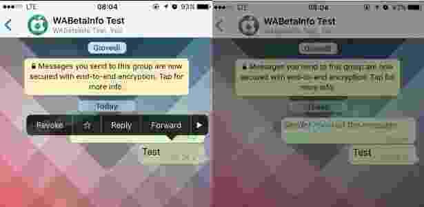 Imagem obtida pelo site WABetaInfo com o recurso de anular mensagens em inglês - Reprodução/WaBetaInfoTest - Reprodução/WaBetaInfoTest