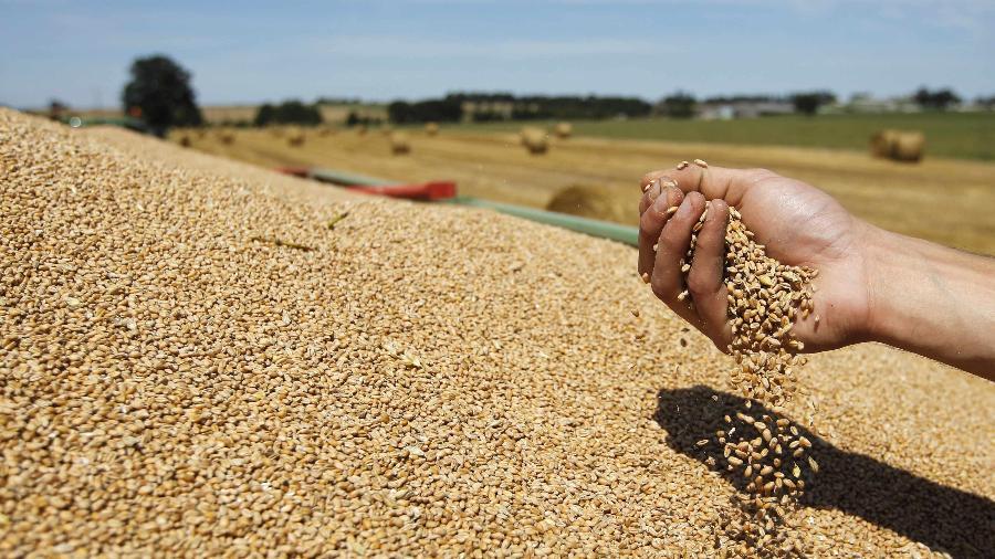 Três em cada quatro vagas foram criadas no setor agropecuário estão na região Sudeste, especialmente em São Paulo  - Stephane Mahe/Reuters