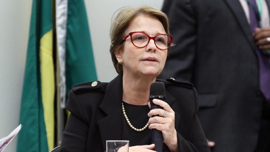 A ministra da Agricultura, Pecuária e Abastecimento, Tereza Cristina (DEM) - Vinicius Loures/Câmara dos Deputados