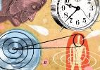 Depressão muda relógio biológico. Veja o que se sabe sobre rotina cerebral - Tim Robinson/New York Times