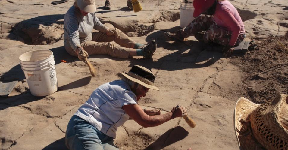Pesquisadores amadores no rastro de dinossauros nos EUA