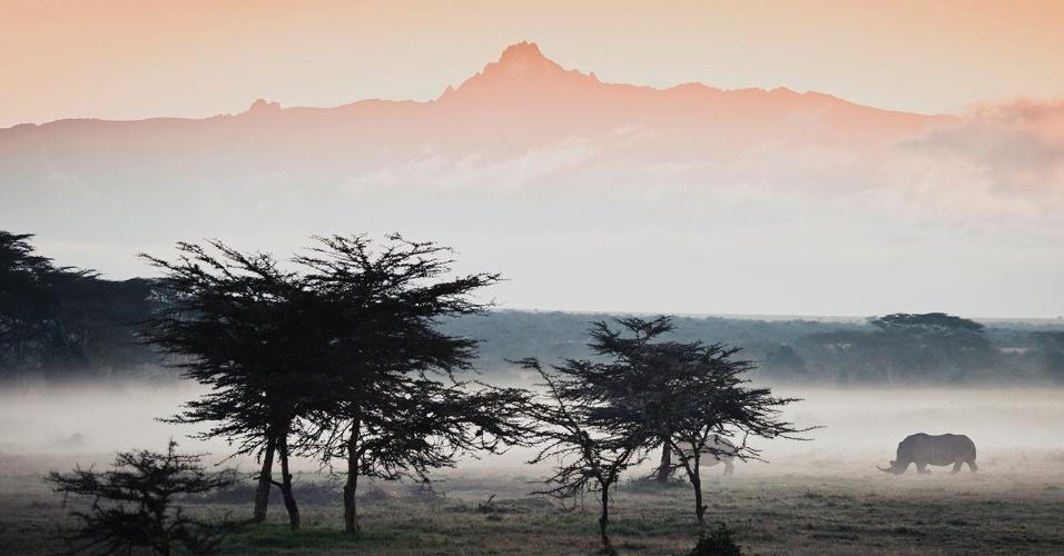 6.abr.2016 - Rinocerontes caminham perto do monte Quênia num dia nublado. Os rinocerontes brancos são herbívoros e residem nas planícies da África