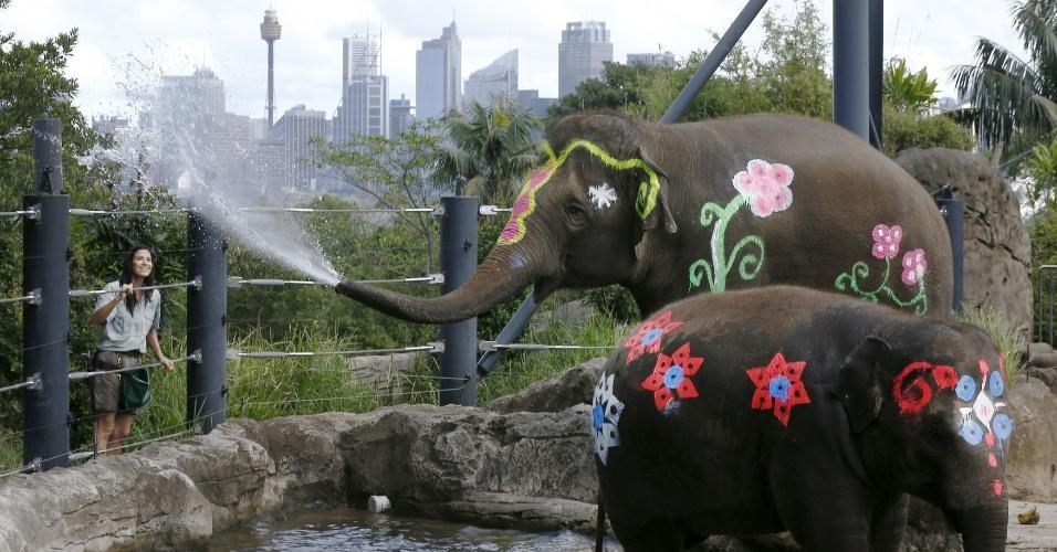 13.abr.2016 - Em Sydney, na Austrália, elefantes asiáticos do zoológico Taronga foram pintados em comemoração ao festival Songkran, o Ano-Novo Tailandês