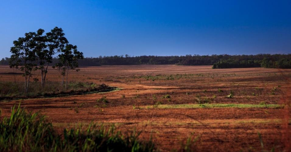 """O Projeto Campos Lindos foi implementado no final da década de 1990 com o objetivo de transformar toda a serra do Centro em uma grande zona produtora de soja. Na foto, entressafra da soja mostra """"as veias abertas"""" de um solo exaurido"""