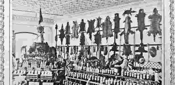 Stand com peles de animais caçados na Amazônia na Feira de Exposição de Bruxelas, em 1911 - Instituto Geográfico e Histórico do Amazonas, Manaus, Amazonas.