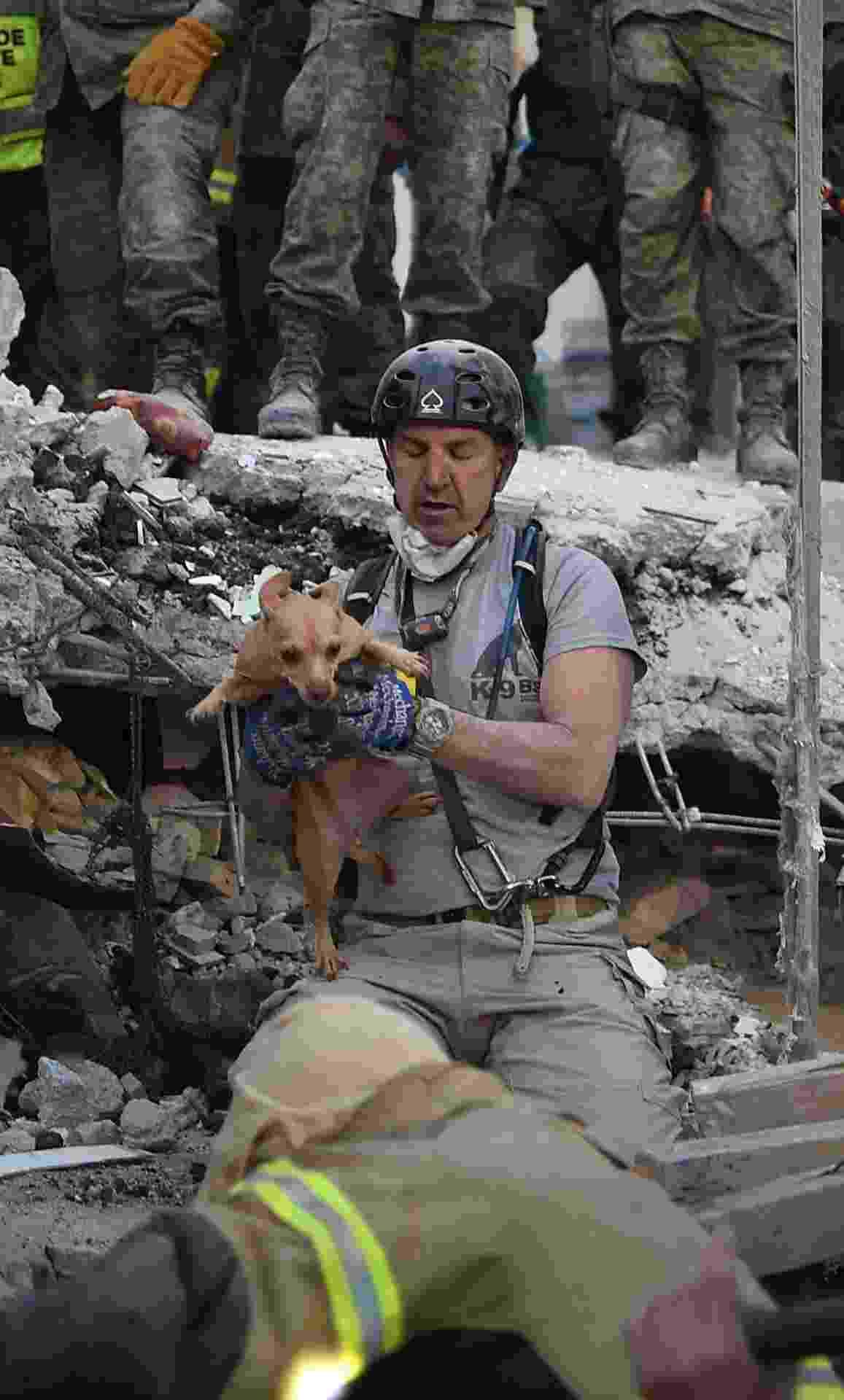 20.set.2017 -  Cachorro é retirado de escombros de edifício destruído após forte terremoto atingir a Cidade do México - YURI CORTEZ/AFP