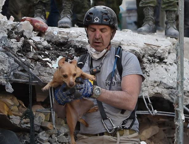20.set.2017 -  Cachorro é retirado de escombros de edifício destruído após forte terremoto atingir a Cidade do México