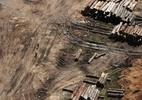 Seis das dez cidades que mais desmataram a Amazônia estão no Pará - Nacho Doce