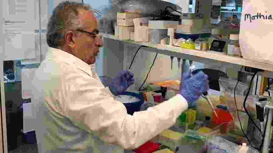Médico Jorge Kalil, chefe do Laboratório de Imunologia do Incor - Arquivo Pessoal