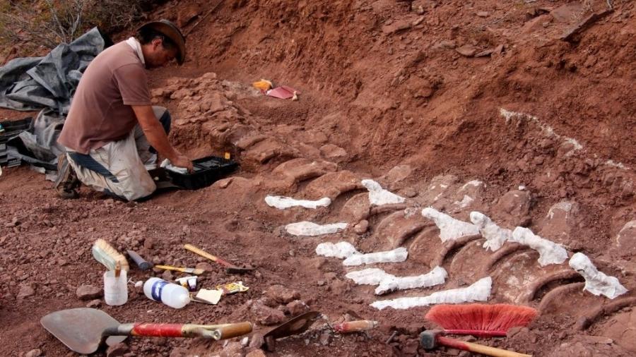 Fósseis encontrados na Argentina podem ser do maior dinossauro já conhecido - Jose Luis Carballido/CTyS-UNLaM/AFP