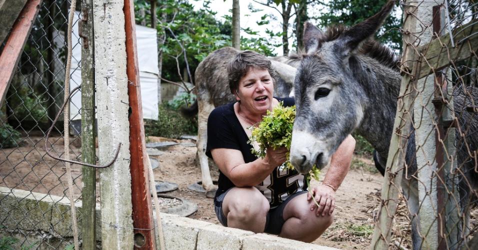 """14.mar.2017 - """"Me falaram que eu sou doida"""", diz Valéria sobre a quantidade de bichos que mantém no sítio. Além de gatos e jumentos, ela e Vânia, sua companheira, cuidam de 50 cachorros adotados"""