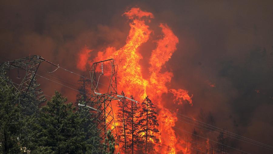 Incêndio de grandes proporções atinge a Plumas National Forest, na Califórnia (EUA) - David Swanson/Reuters