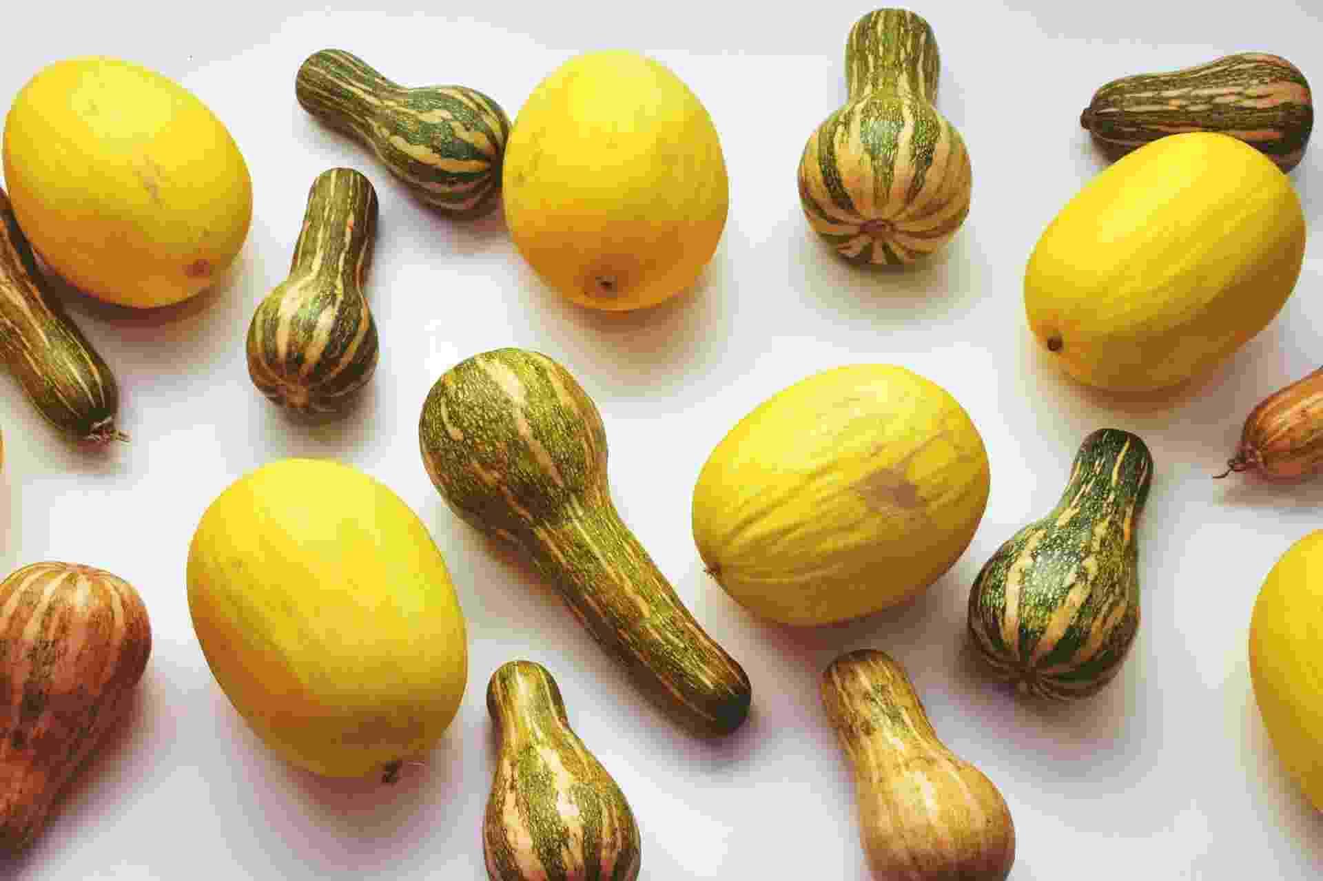 Fruta Imperfeita melão abobrinha - Divulgação