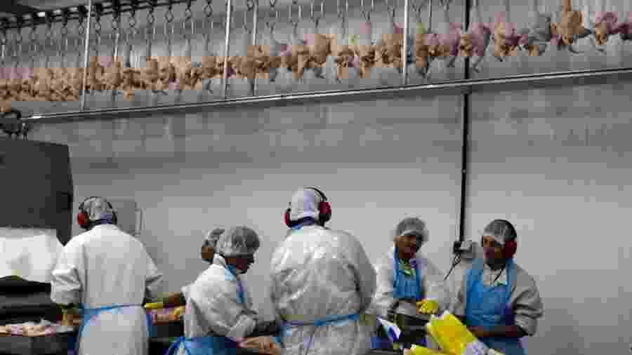 Processamento de frangos em frigorífico em Itatinga (SP) - Por Jake Spring e Ana Mano