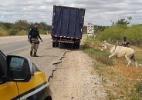 Divulgação/Polícia Rodoviária Federal
