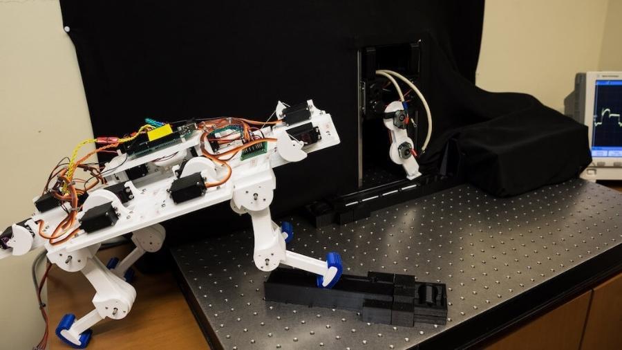 O novo algoritmo pode ser revolucionário para desenvolver próteses - Matthew Lin / University of Southern California