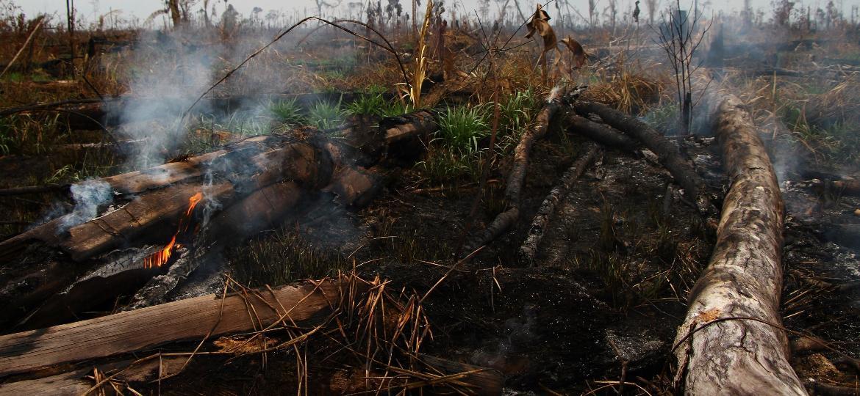 2.set.2019 - Grande área desmatada e queimada em Lábrea (AM), às margens da rodovia BR-230 - Edmar Barros/Futura Press/Estadão Conteúdo