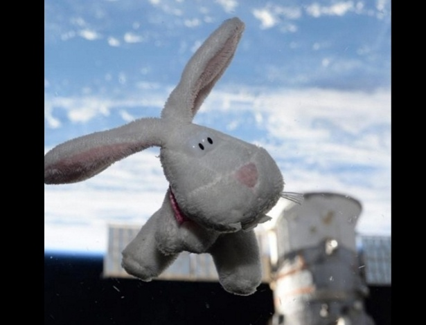 """2.mar.2016 - A estrela de um dos primeiros posts de Scott foi o coelhinho da Páscoa. """"O coelhinho veio visitar. #FelizPascoa da EEI"""""""