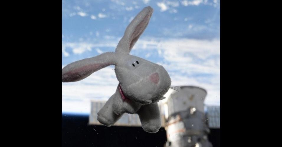 2.mar.2016 - A estrela de um dos primeiros posts de Scott foi o coelhinho da Páscoa.