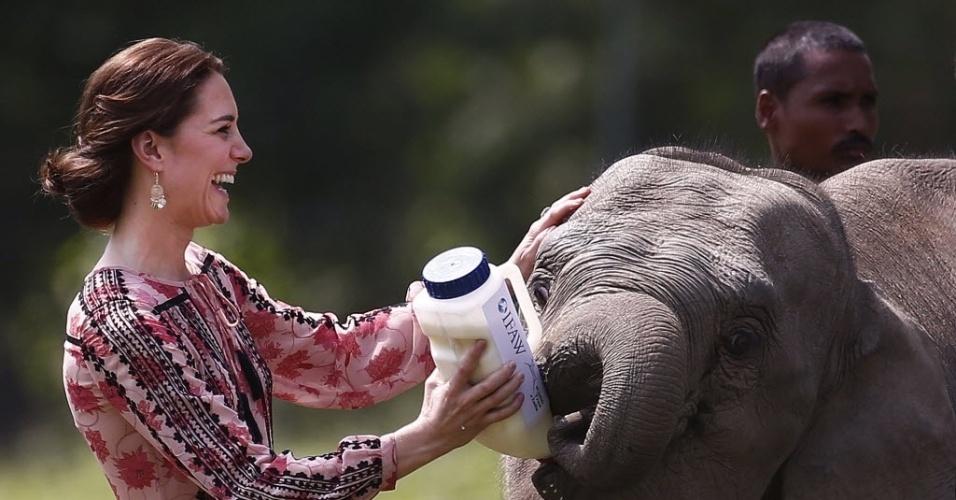 13.abr.2016 - A duquesa de Cambridge, Kate Middleton, alimenta um filhote de elefante no Centro de reabilitação dos animais selvagens e Conservação no estado do nordeste de Assam, Índia. O príncipe William e a mulher dele, Kate, estão em visita oficial à Índia, sem os filhos