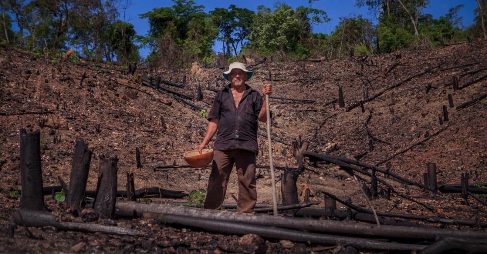 """Em mutirão, planta-se mandioca com fertilização de cinzas de pequenas áreas queimadas, em sistema de rodízio para que a vegetação e o solo se regenerem, no que é conhecido na região por """"roça de toco"""""""