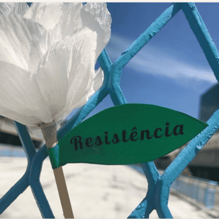 Rosa da resistência - Reprodução Instagram - Reprodução Instagram